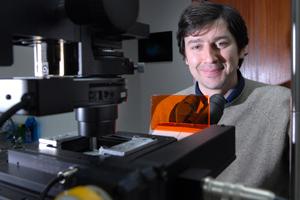Equipa liderada por Helder Maiato conseguiu manipular reação que leva à morte de células cancerigenas