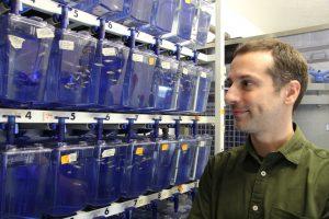 José Bessa, investigador do IBMC e um dos autores do artigo