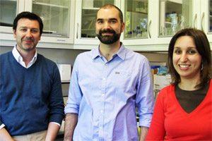 Helder Maiato, Marin Barisic e Ana Pereira (IBMC)