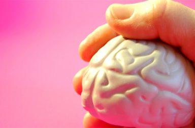cérebro|1