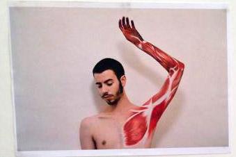 Exposição de Desenho Anatómico - ICBAS FBAUP