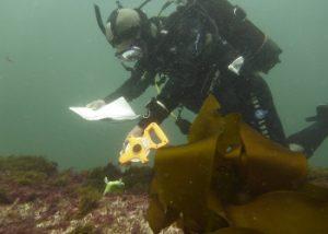 Durante a reunião foi referido o trabalho desenvolvido por Portugal e o seu alinhamento com os standards europeus a nível de mergulho científico.
