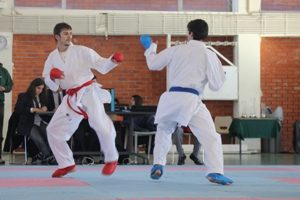 karate noticia
