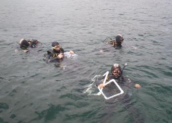 Os alunos realizaram uma sessão de mergulho em Peniche a 5 e 10 metros de profundidade