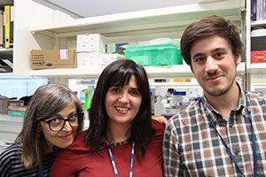 Equipa INEB | Projeto MicroRNAS