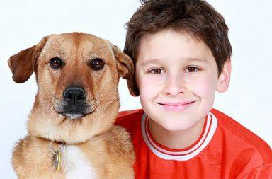 cão e criança (destaque)|630_330_Oncologia Veterinaria|330_230_Oncologia Veterinaria