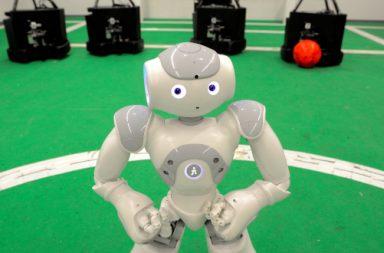 roboticafeup_630|festival-robotica-2_630_330|festival-robotica-2_600_400