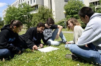 Estudantes no Jardim da FCUP (destaque)