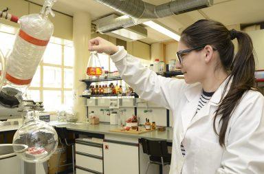 Química (destaque)|investigadora da FCUP (destaque)