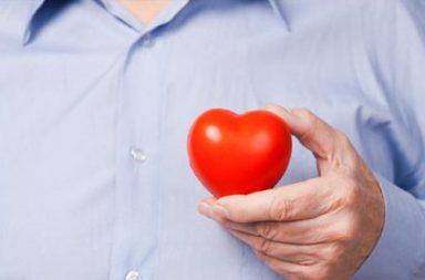 coração (destaque)|Perpétua|trabalho Perpétua