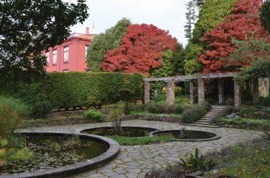 Jardim Botânico do Porto (destaque)|Jardim Botânico do Porto