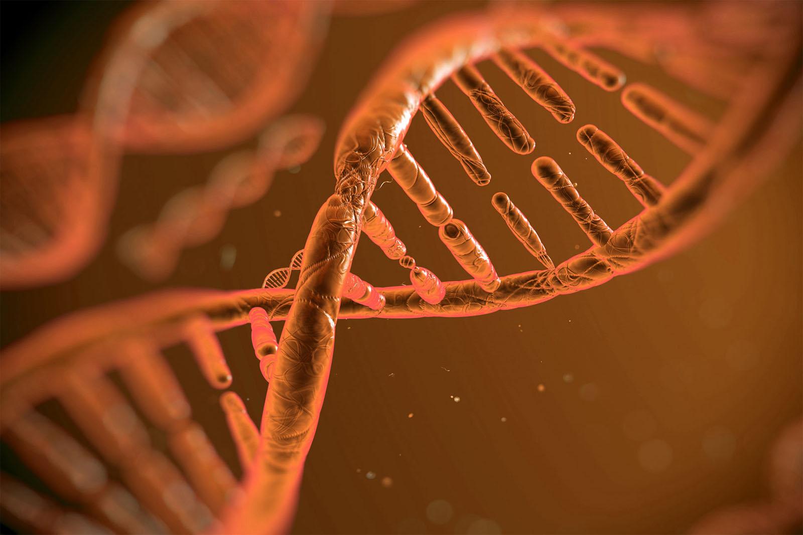 """Foi revelado o """"mapa"""" mais completo dos genomas de cancro. E a U.Porto ajudou a traçá-lo..."""