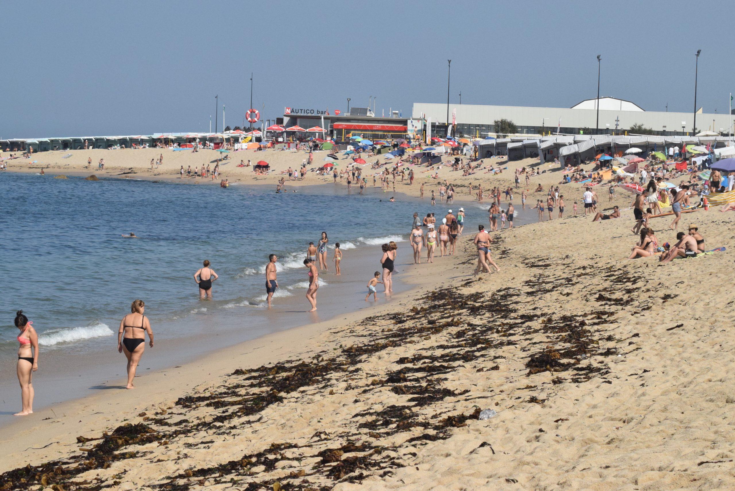 Investigadores do ICBAS detetam poluentes microbianos em praias do Norte