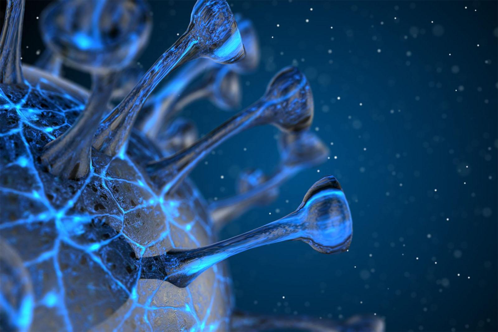 Equipa da FFUP aposta nas nanopartículas para combater a COVID-19