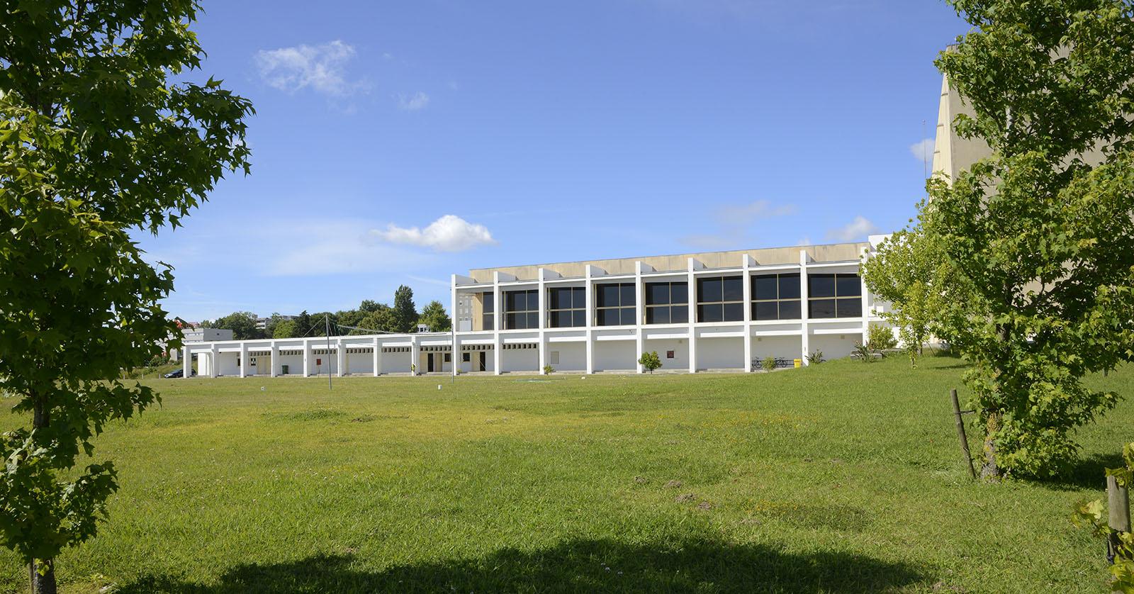 Faculdade de Desporto celebra 45 anos