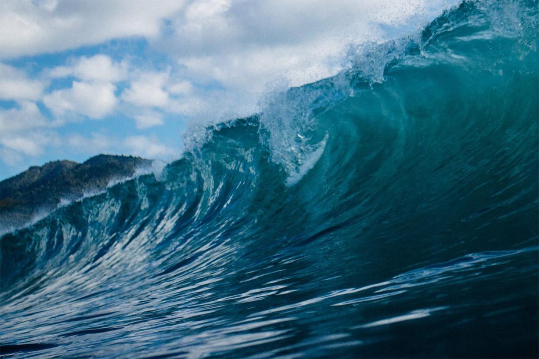 ATLANTIDA junta universidades do norte em nome da sustentabilidade do oceano