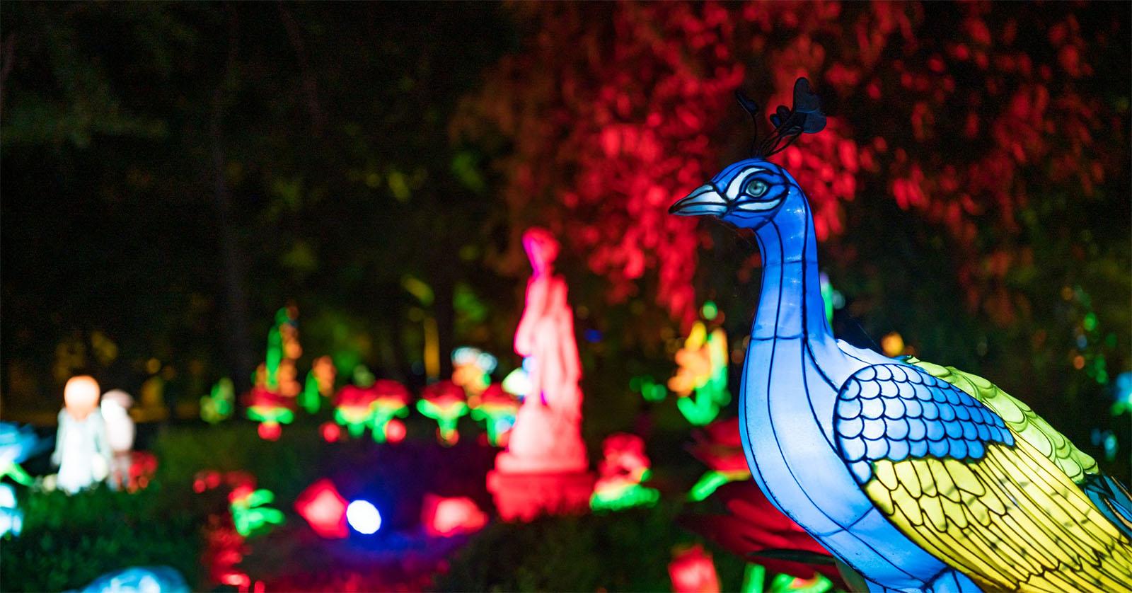 A magia vai estar à solta no Jardim Botânico da U.Porto