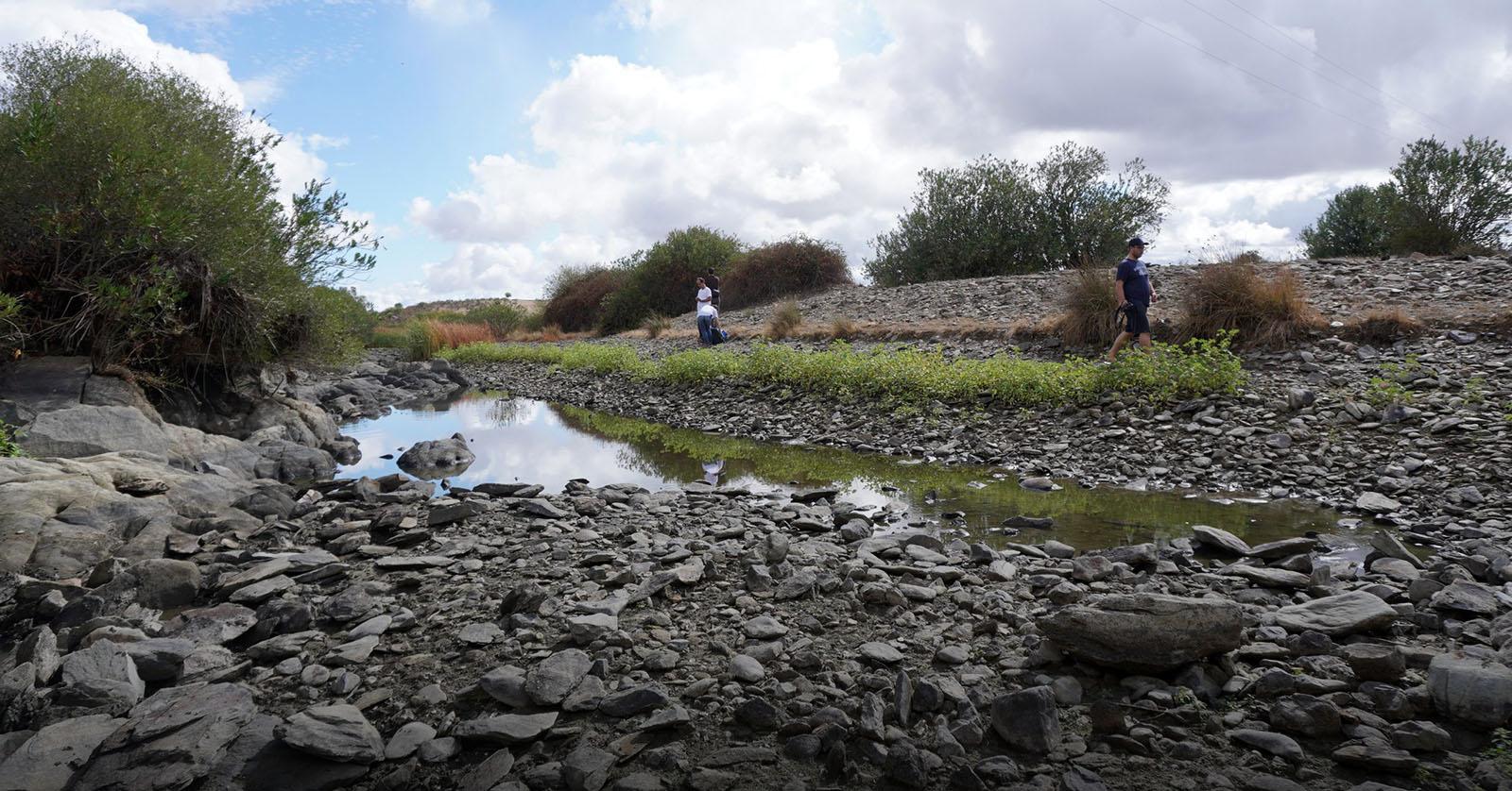 CIIMAR alerta para impacto das alterações climáticas na biodiversidade de água doce